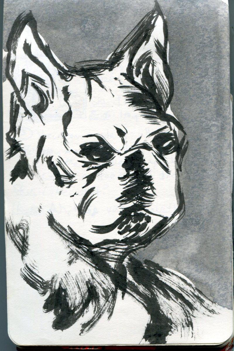 FWACATA Sketchbook 210