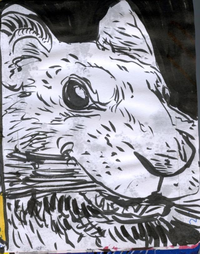 FWACATA sketchbook  45