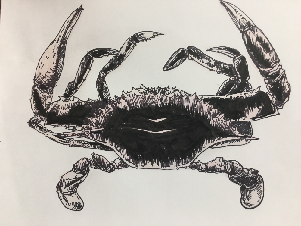 Feeling.... crabby